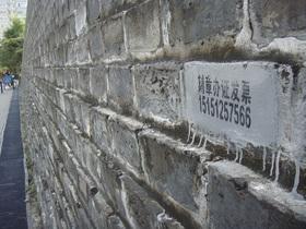 pkn-wall2.jpg