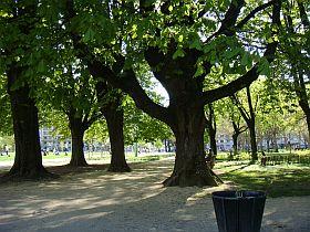 parc1.jpg